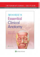 Moore's Essential Clinical Anatomy, 6th edition-International Edition